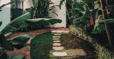 acondicionamiento de jardin